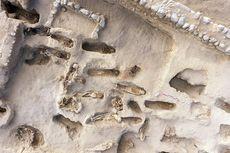 Arkeolog Temukan 227 Kerangka Anak Korban Tumbal Ritual di Peru
