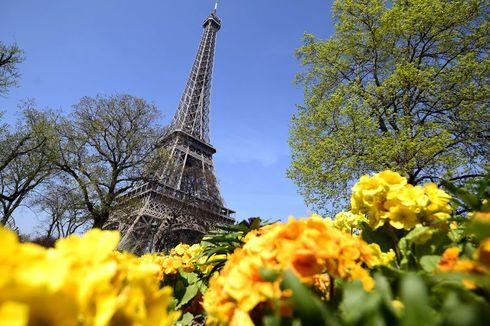 Update: 64 Tempat Wisata Sediakan Virtual Traveling, Liburan di Rumah Aja!