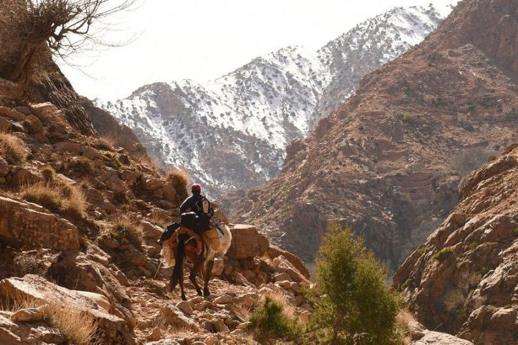 Pegunungan Atlas Tinggi yang berbukit-bukit di Maroko sangat populer di kalangan penjelajah dan pendaki (AFP/ FADEL SENNA).