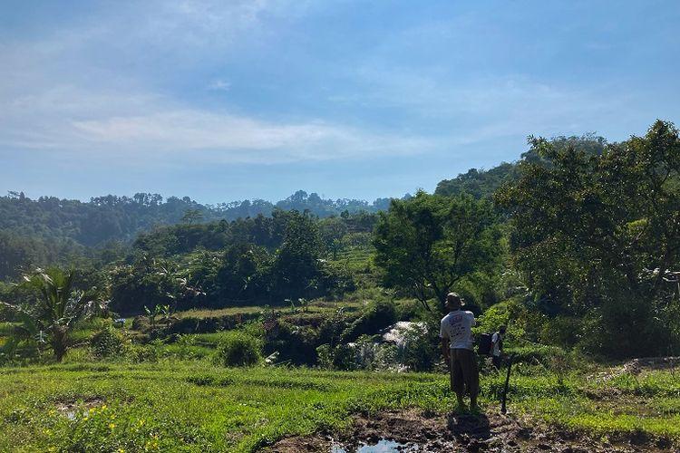 Hamparan sawah yang berada di tepian aliran sungai di Kecamatan Babakan Madang, Kabupaten Bogor, Rabu (26/5/2021).