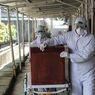 Tingkat Kematian akibat Covid-19 di Indonesia Masih Tinggi