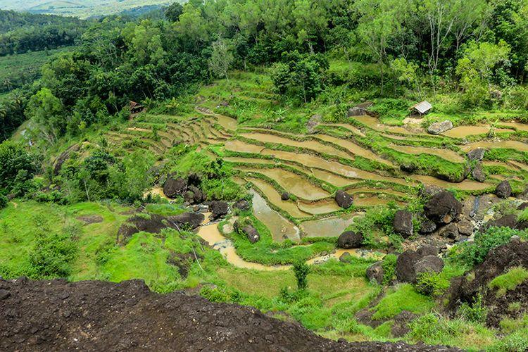 Aliran sungai yang menjadi sumber Air Terjun Kedung Kandang.
