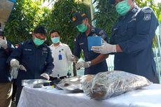 BNN Bali Sebut Kasus Narkoba Meningkat Selama Pandemi Covid-19