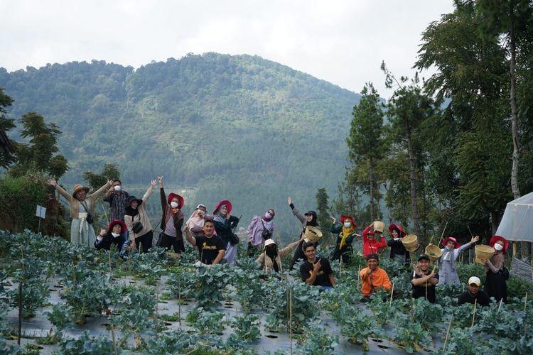 Peserta Care Visit Dompet Dhuafa tengah beraktivitas di lahan pemberdayaan pertanian sayuran di Lembang, Jawa Barat, akhir pekan lalu. Selain memperkenalkan salah satu produk pemberdayaan Dompet Dhuafa, Care Visit tersebut juga menjadi sarana memperingati Hari Tani Nasional.