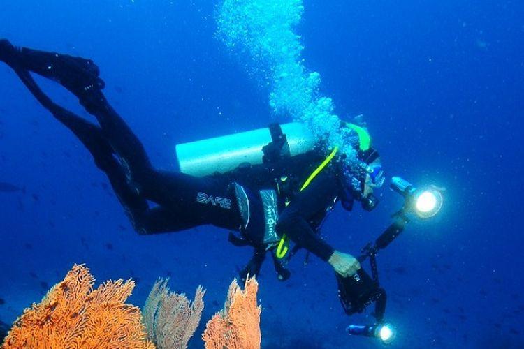 Ilustrasi diving