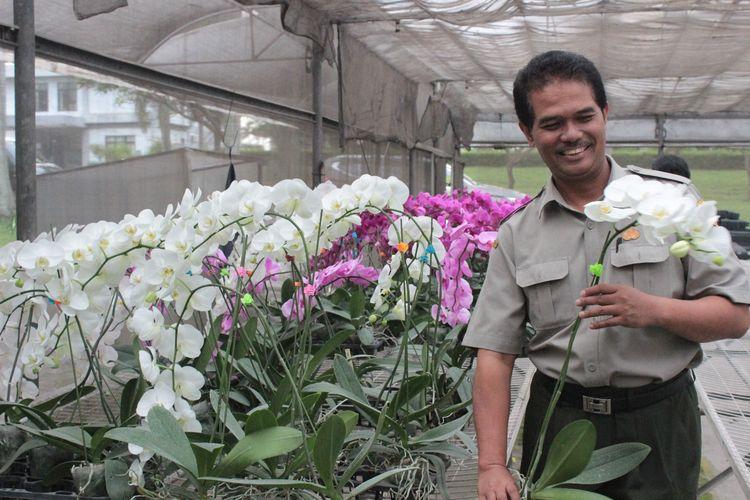 Kementan terus melakukan pendampingan budidaya bunga krisan yang akan diekspor ke berbagai negara di dunia, salah satunya Jepang.