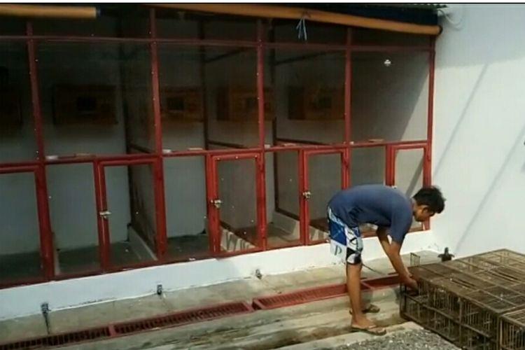 Kandang Burung Jayabaya di Kalimulya, Depok, Jawa Barat, Kamis (4/7/2019).