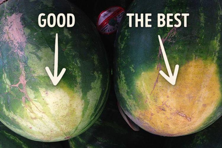 Titik bidang untuk menentukan semangka yang bagus
