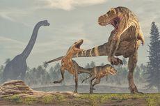Studi Baru: Dinosaurus Punah karena Asteroid Bukan Letusan Gunung Berapi