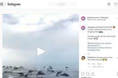 Ini Penjelasan Kawanan Besar Lumba-Lumba Muncul di Perairan Bali