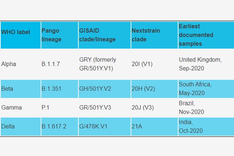 Tangkapan layar penamaan virus SARS-CoV-2 yang termasuk variants of concern.