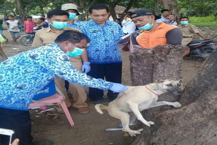 Petugas saat memberikan vaksinasi anjing untuk mencegah penyebaran virus rabies