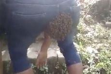 Fenomena Langka, Kawanan Lebah Hinggap di Bokong Pria Ini