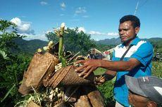 Wilayah dan Masyarakat Adat Berkontribusi Besar bagi Pemulihan Ekonomi