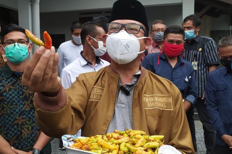 Bupati Banyumas Achmad Husein menunjukkan cabai rawit yang diduga dicat merah di kompleks Pendapa Sipanji Purwokerto, Kabupaten Banyumas, Jawa Tengah, Rabu (30/12/2020).