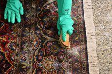 Cara Membersihkan Bulu dan Rambut Rontok yang Tersangkut di Karpet