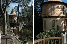 Begini, Contoh Rumah Pohon untuk Keluarga Modern!