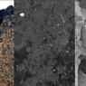 Meteorit Langka Berusia 4,6 Miliar Tahun Ditemukan di Bekas Jejak Kuda