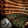 Ketika 2.292 Penonton Tanaman Hadiri Konser Opera Barcelona