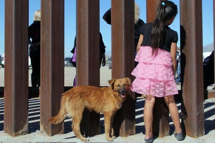 Ilustrasi anak migran yang terpisah dengan orangtuanya.
