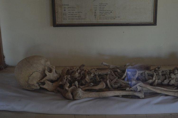 Kerangka manusia purba yang bisa dilihat di Museum Manusia Purba Gilimanuk di Kabupaten Jembrana, Bali.