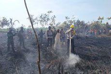 Polisi Tangkap 8 Pelaku Pembakar Hutan dan Lahan di Riau