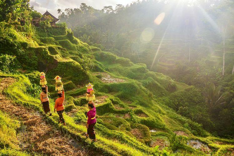 Ilustrasi Suku Bali di Ubud DOK. Shutterstock/CherylRamalho