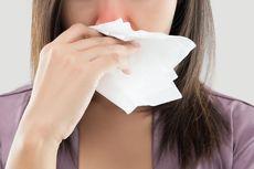 Punya Gejala Mirip, Begini Cara Membedakan Sinusitis dan Pilek Biasa