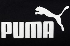 Puma Diprotes Balai Konservasi India karena Dianggap Merusak Cagar Budaya