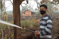Lahan Gambut Bekas Karhutla di Kalbar Bakal Ditanami Ubi Kayu dan Nanas