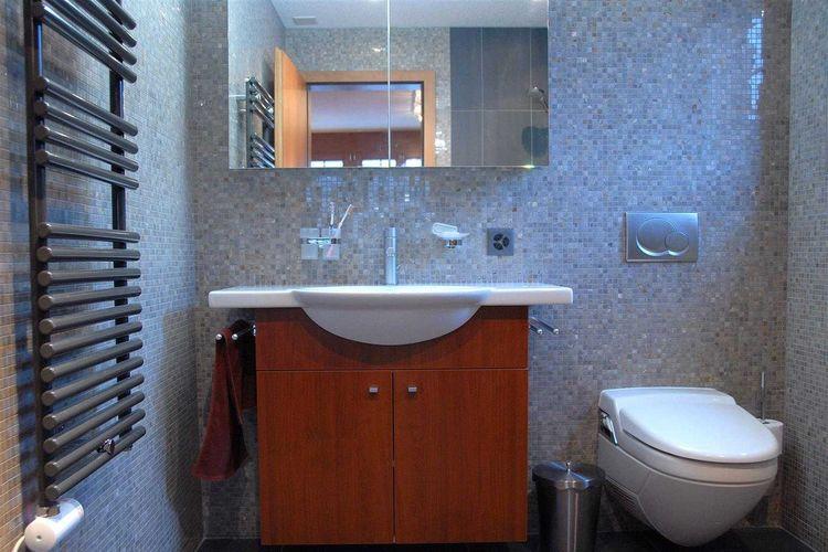 Wall mounted toilet di Lenk Hotel Switzerland karya Agung Budi Raharsa
