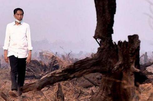 Presiden Jokowi Gelar Ratas Kebakaran Hutan di OKI, ke Mana Menko Puan?