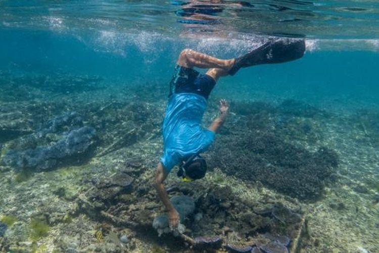 Supriyatno menanam terumbu karang secara berkelanjutan di dasar laut