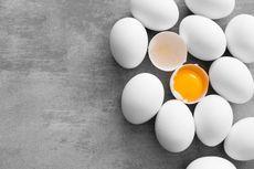 Benarkah Kuning Telur Warna Oranye Lebih Sehat dari Kuning Pucat?