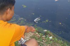 DLHK Karawang: Penyebab Sungai Citarum Menghitam dan Berbau Bukan karena Limbah