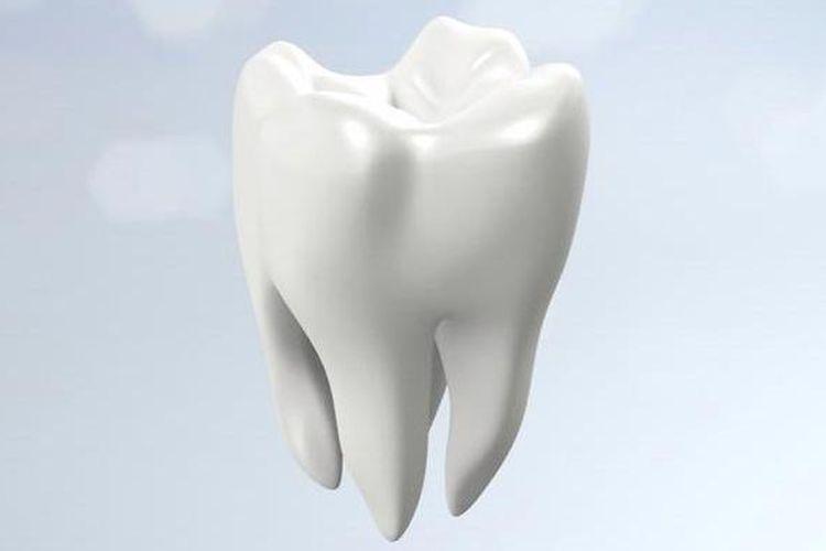 Ilustrasi gigi