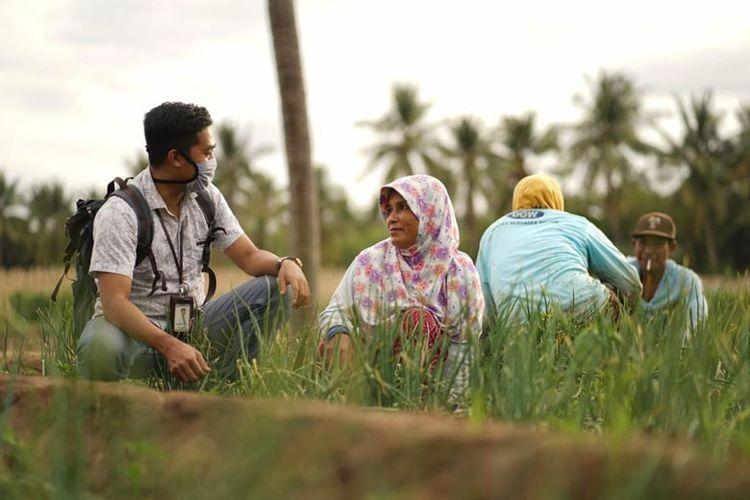 PT Bank Rakyat Indonesia (Persero) Tbk salurkan Rp 26,5 KUR pertanian dalam kurun enam bulan.