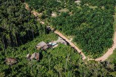 Walhi: Ganti Rugi Rp 100.000 Per Hektar untuk Tanah Adat Papua Tak Masuk Akal