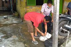 Titik Terang Kasus Jagal Kucing di Medan, Saksi Kunci Ditemukan, Bukti Lengkap