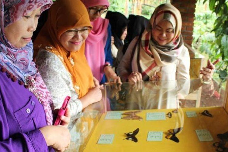 ILUSTRASI - Pengunjung melihat-lihat koleksi kupu di obyek wisata Taman Kupu-kupu di Kampung Kopi Banaran di Jalan Utama Bawen-Tuntang, Kabupaten Semarang, Jawa Tengah.