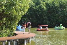 6 Aktivitas Menarik Saat Wisata ke Grand Maerakaca, Jelajah Hutan Mangrove