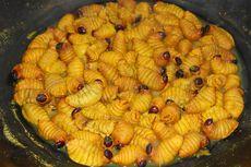 Kidu-kidu Ulat Pohon Enau, Kuliner Khas Karo