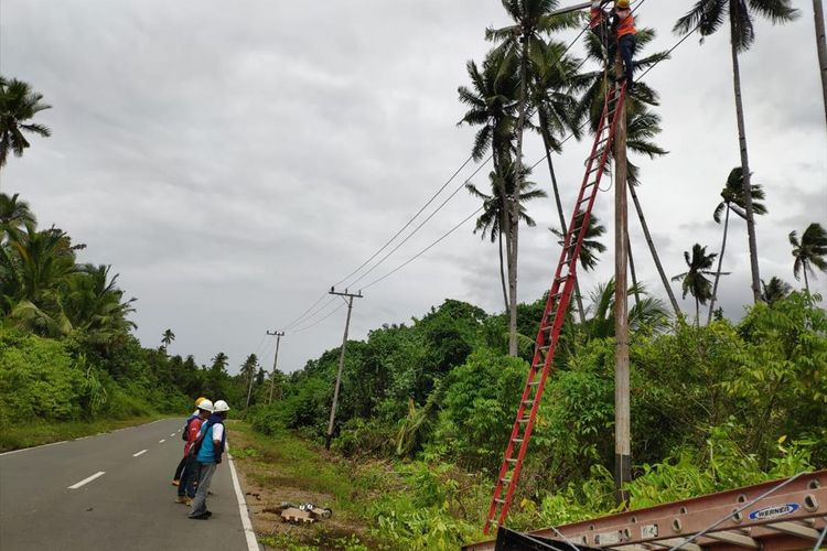 Petugas PLN di wilayah Halmahera Selatan, Maluku Utara memperbaiki gangguan jaringan listrik di wilayah tersebut, Jumat (19/7/2019) Foto dok Manager Komunikasi PLN Unit Induk Wilayah Maluku dan Maluku Utara, Ramli Malawat