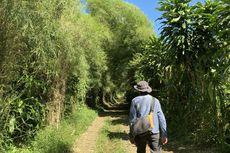 Itinerary 3 Hari 2 Malam Wisata di Bogor, Ajak Anak Berpetualang