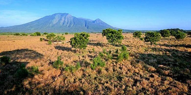Taman Nasional Baluran di Jawa Timur.(BARRY KUSUMA)