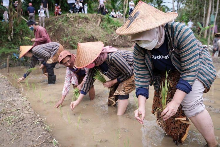 Peserta uji coba Borobudur Trail of Civilization belajar bercocok tanam.