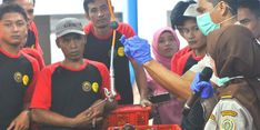 Kabar Baik, Ekspor Manggis RI ke China Naik 111 Persen di Masa Pandemi Covid-19
