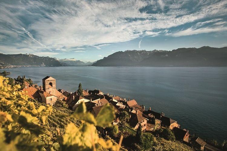 Kebun anggur Lavaux dengan pemandangan Danau Janewa