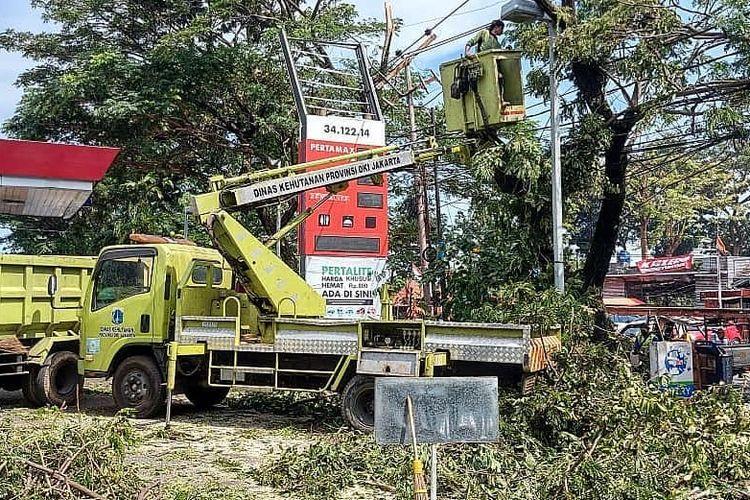 Suku Dinas (Sudin) Pertamanan dan Hutan Kota Administrasi Jakarta Selatan (Jaksel) menyebar ratusan petugas yang tergabung dalam tim khusus untuk mengantisipasi pohon tumbang jelang cuaca ekstrem.