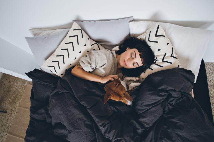 Ilustrasi tidur bersama anjing